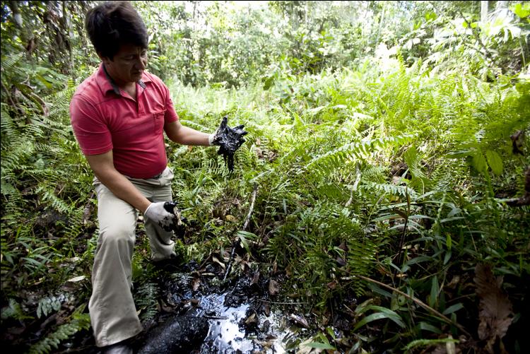 Oil contaminates open pits in the Ecuadorian Amazon. (Rainforest Action Network)