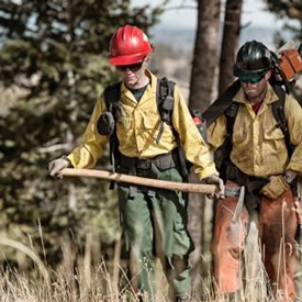 Living on Earth: Sexual Misconduct in the US Forest Service